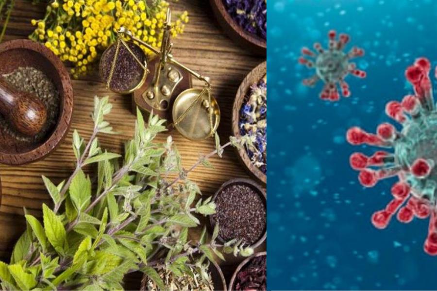 कोविड-19 में रोग प्रतिरोधक शक्ति बढ़ाने के लिए आयुर्वेद के उपाय